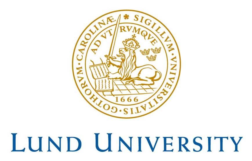 lund_uni-logo_s